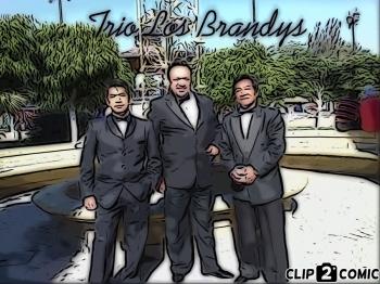Trío musical los Brandys_19